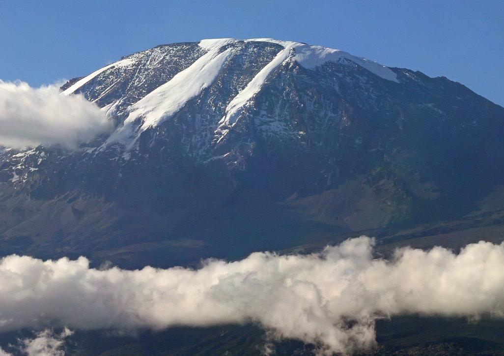 Mount Kilimanjaro Crop